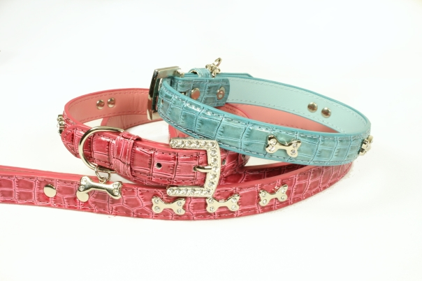 Diane Katzman Design collar and leash