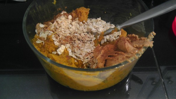Pureed sweet potatoes, peanut butter, oats and cinnamon