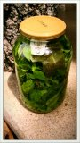 Easy basil mint tea in a pickle jar