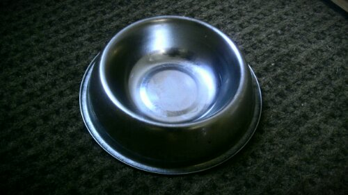 empty dog food bowl