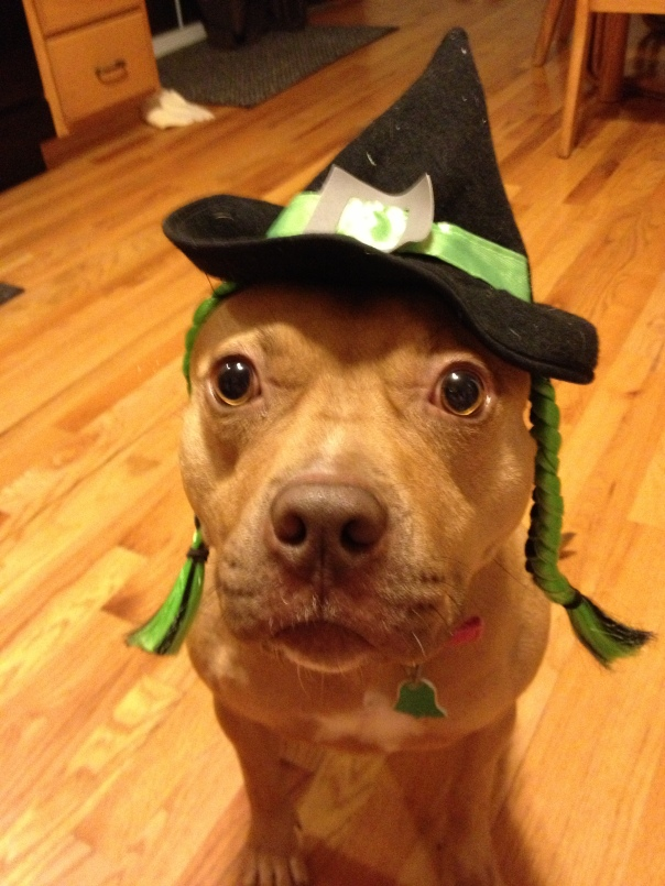 Mugsy the witch