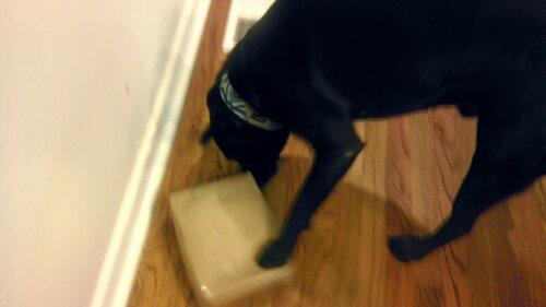 Machete noses a box