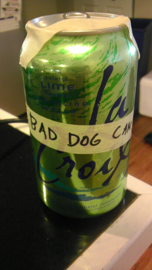 bad dog can