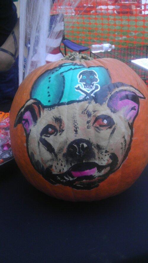 pit bull pumpkin