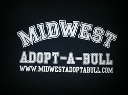 Midwest Adopt-a-Bull
