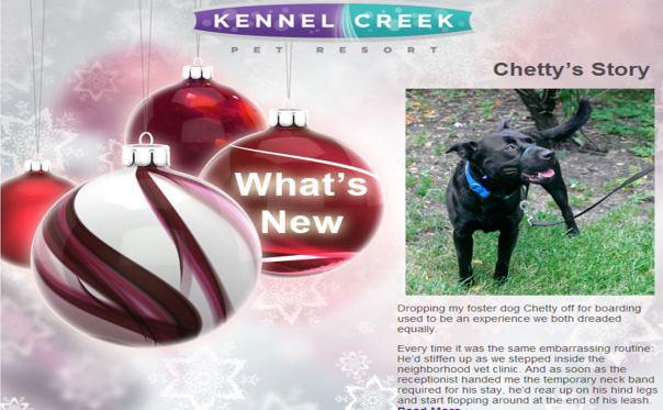 Kennel Creek Pet Resort december newsletter