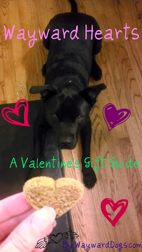 Valentine's Day Gift Guide from Wayward Dogs